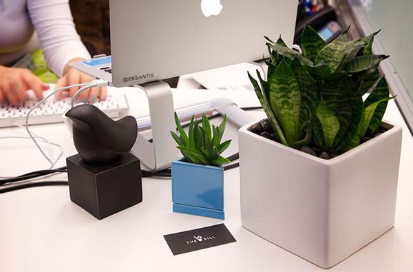 4 loại phụ kiện hút tài lộc cho bàn làm việc