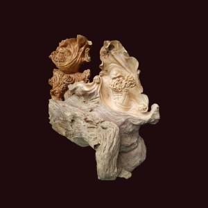 Tượng Đạt Ma gỗ lũa sụn pơ mu 67x63x43cm