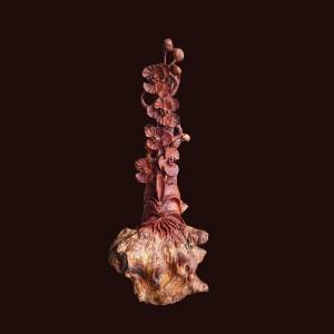 Hoa lan hồ điệp gỗ cẩm lông chuột 49x21x19cm