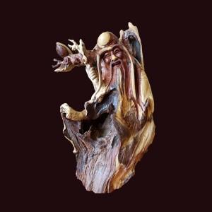Tượng Thọ đào gỗ lũa cẩm chỉ 47x31x28cm