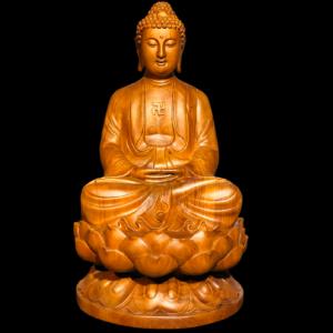 Tượng Phật A Di Đà Gỗ Hương Đá 60x30x30cm