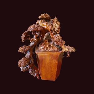Bonsai tùng gỗ hương Gia Lai 47x35x27cm