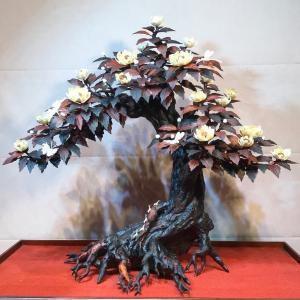 Cây Phù Dung Bonsai Gỗ Trắc Kết Hợp Ngà Voi 75x35x65cm