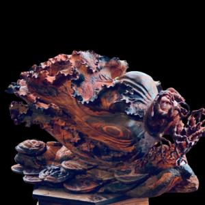 Bắp Cải Phong Thủy Gỗ Trắc Gia Lai 55x39x29cm